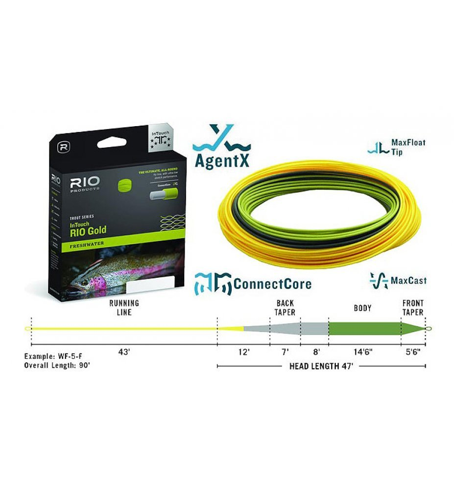RIO IN TOUCH GOLD WF